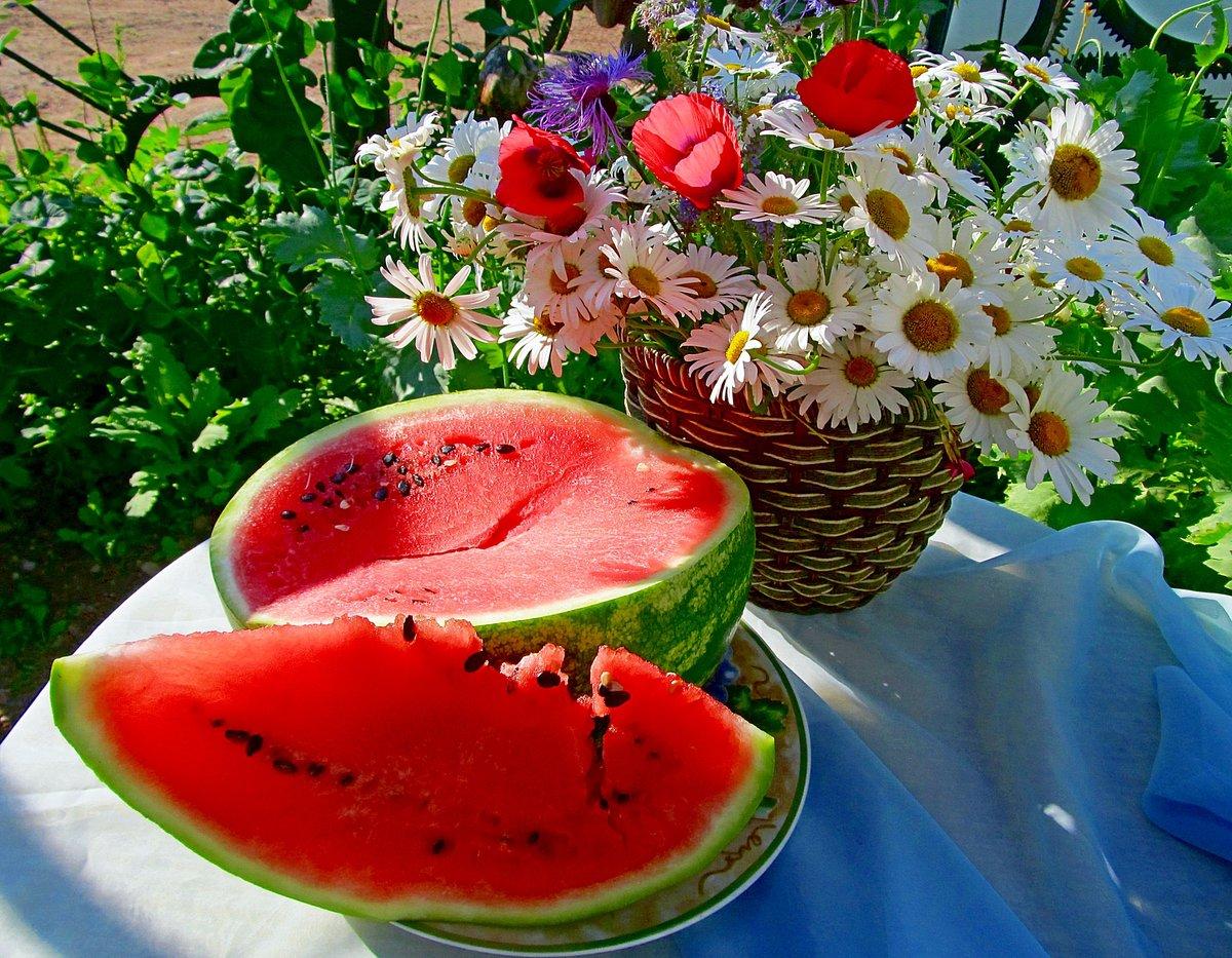 Лето июль картинки прикольные, юбилеем женщине