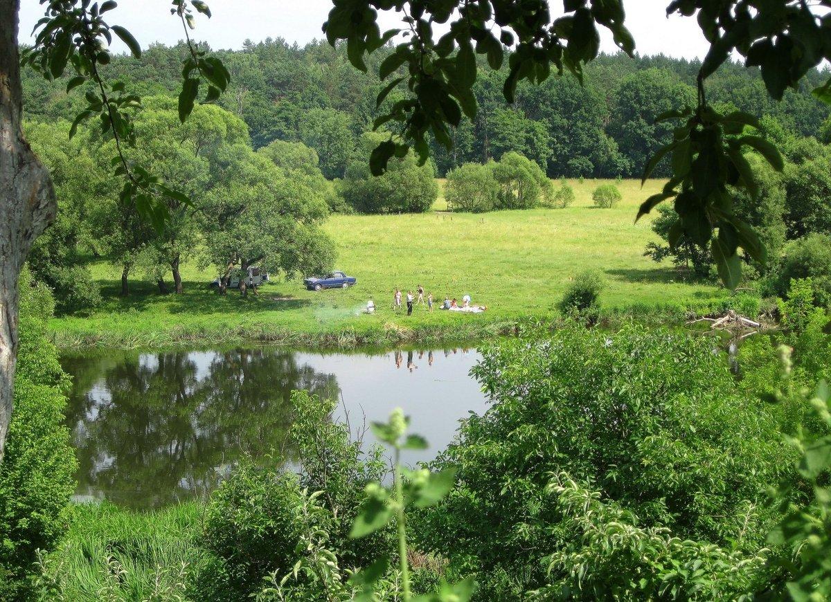 Отдых у реки картинки