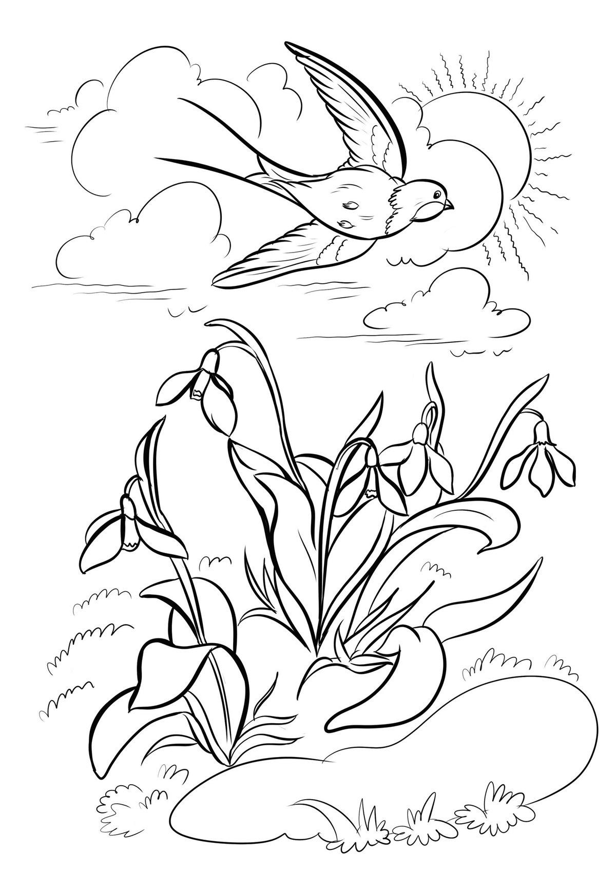 пес картинки карандашом о весне и лететь стеноз обычно представляет
