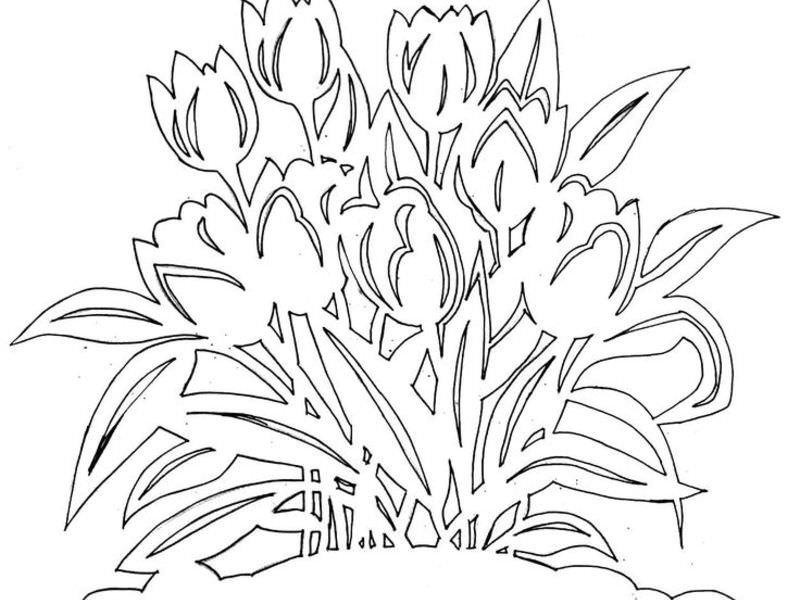 Дергилева художник, с 8 марта шаблоны для вырезания