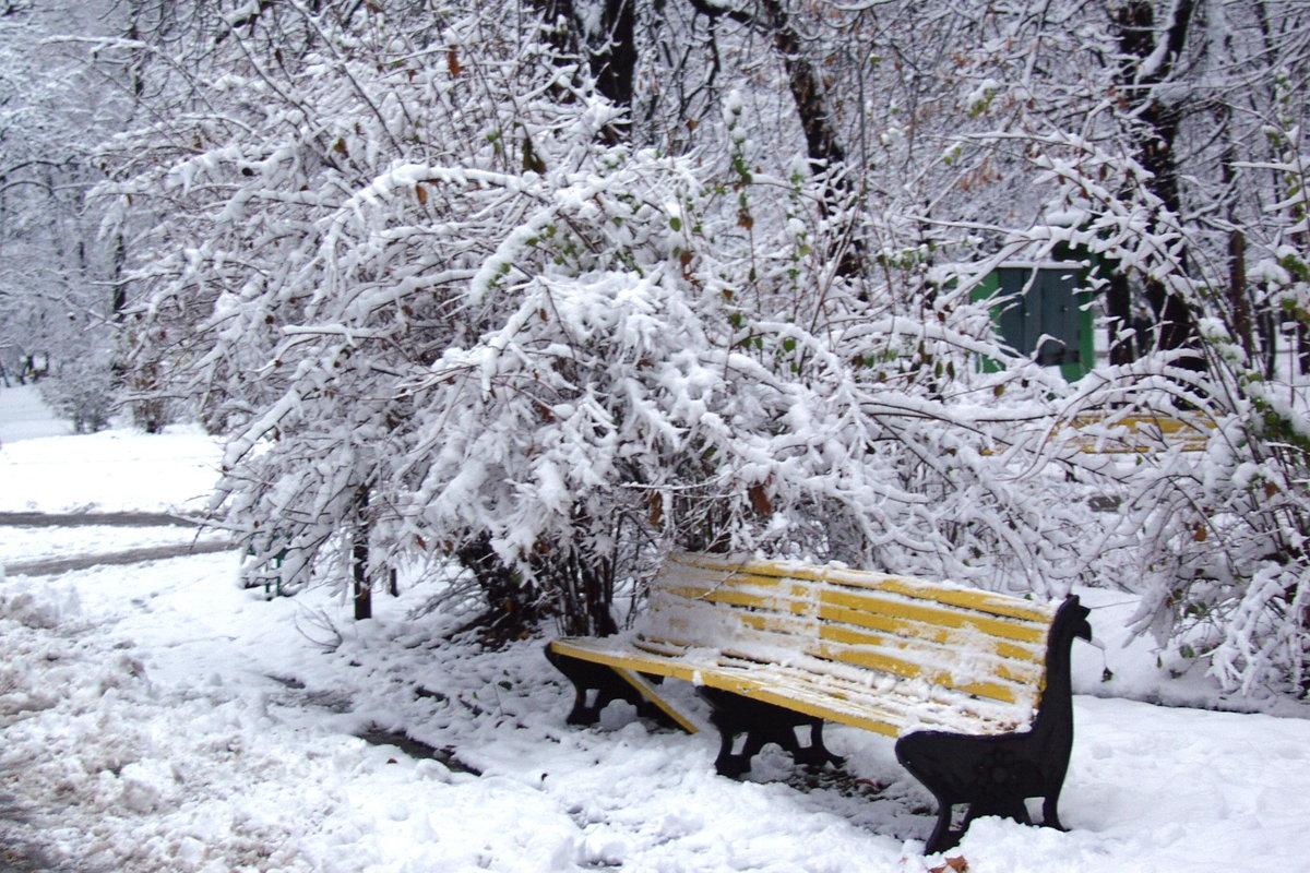башкирии скамейка под снегом картинки судя тому, что
