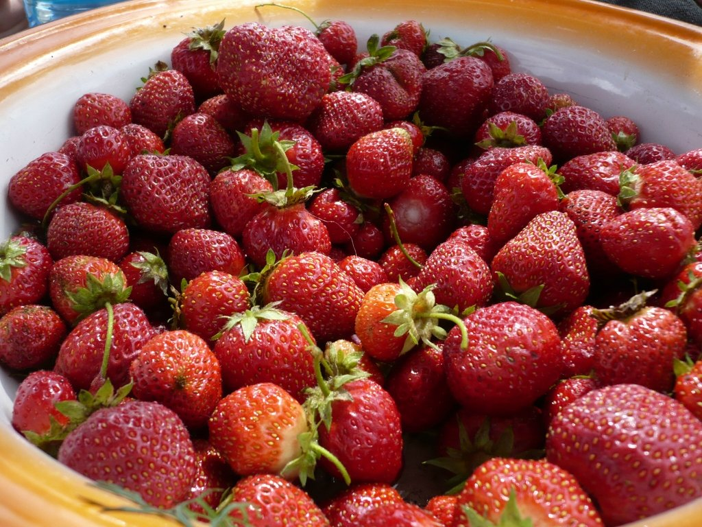 Картинки виктория ягода