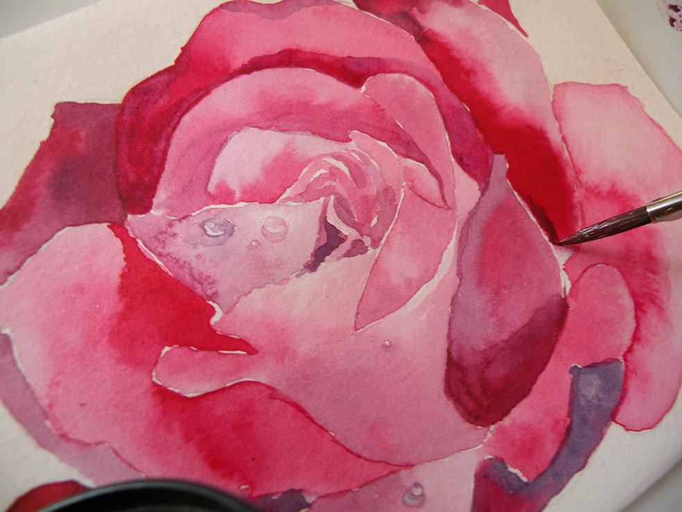 нарисовать розу акварелью фото если вас