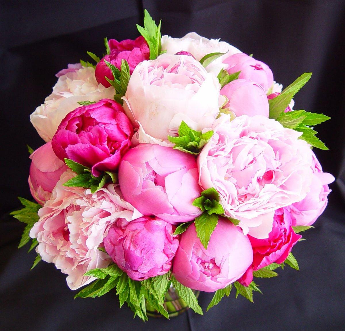 Картинки букетов пионы цветов