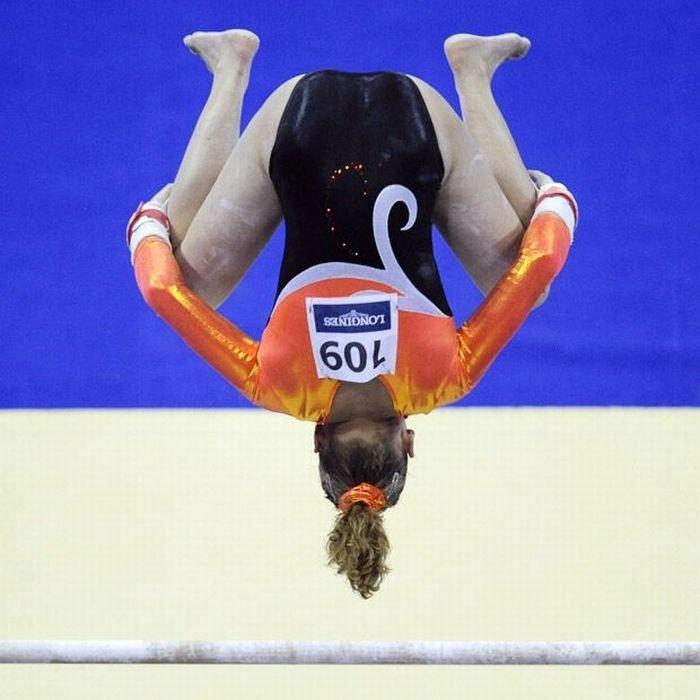 Прикольная гимнастика картинки