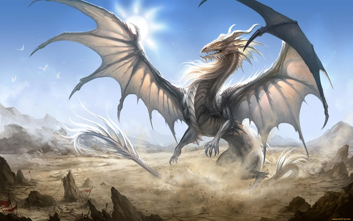 Картинки драконов с надписями, днем