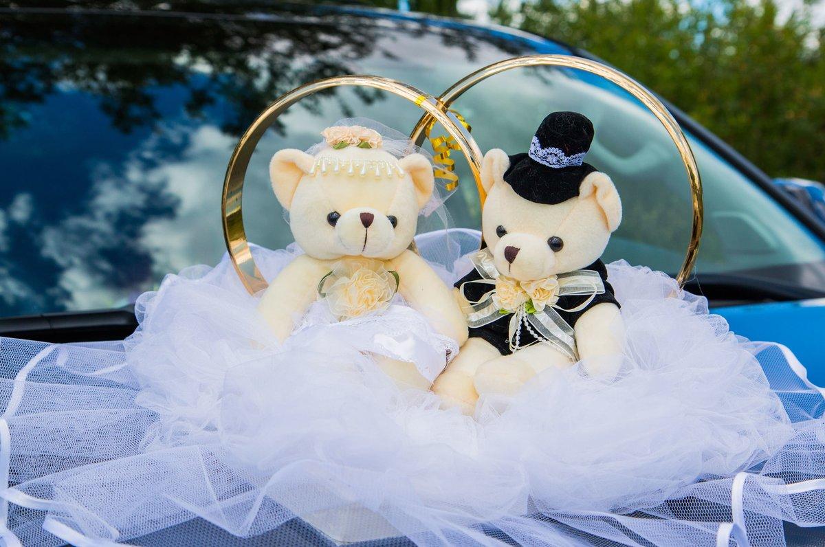 Картинки мишки свадьба машины