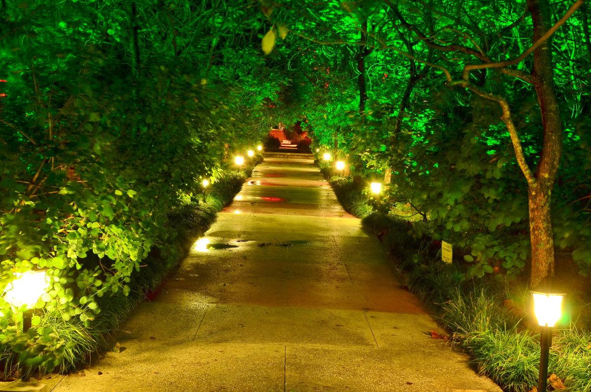 картинки фонарей в парке и скверах мастерски