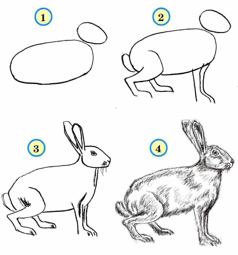 Открытка для, картинки с животными нарисованные карандашом для детей