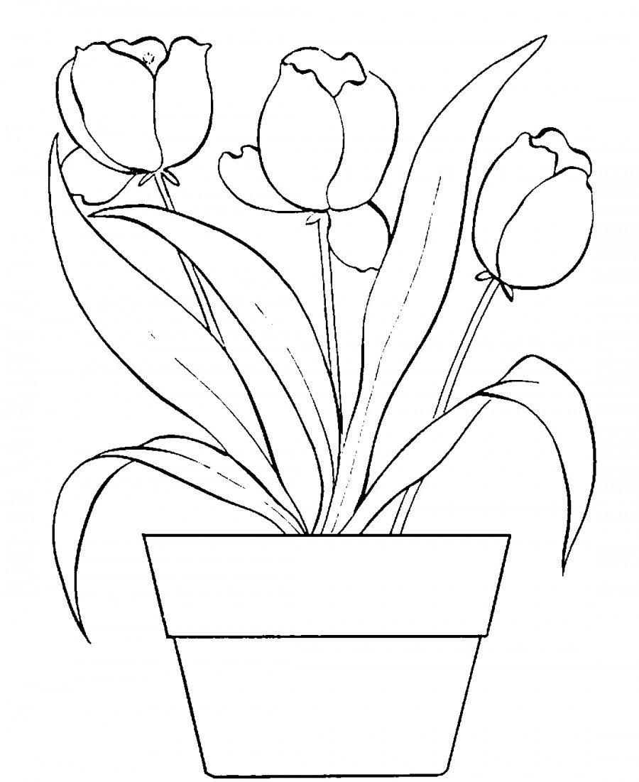 Рисунок цветы для мамы в детском саду карандашом