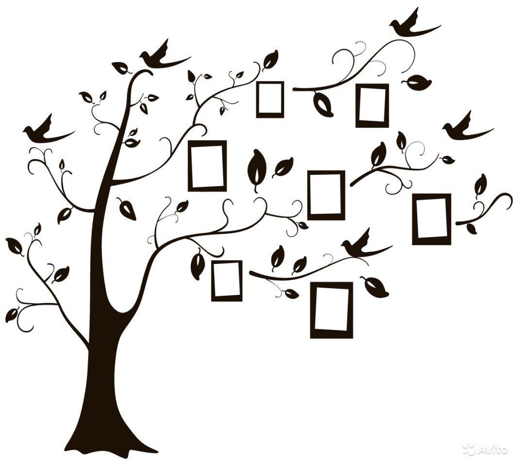 рисунки генеалогического дерева изобилии представлены продаже