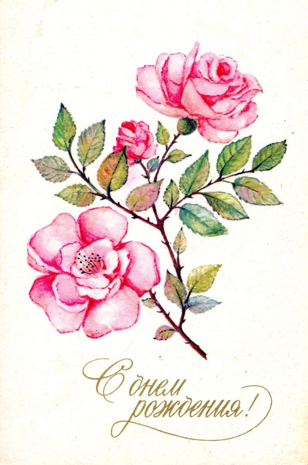 Рисунки для открыток с днем рождения цветы, днем рождения
