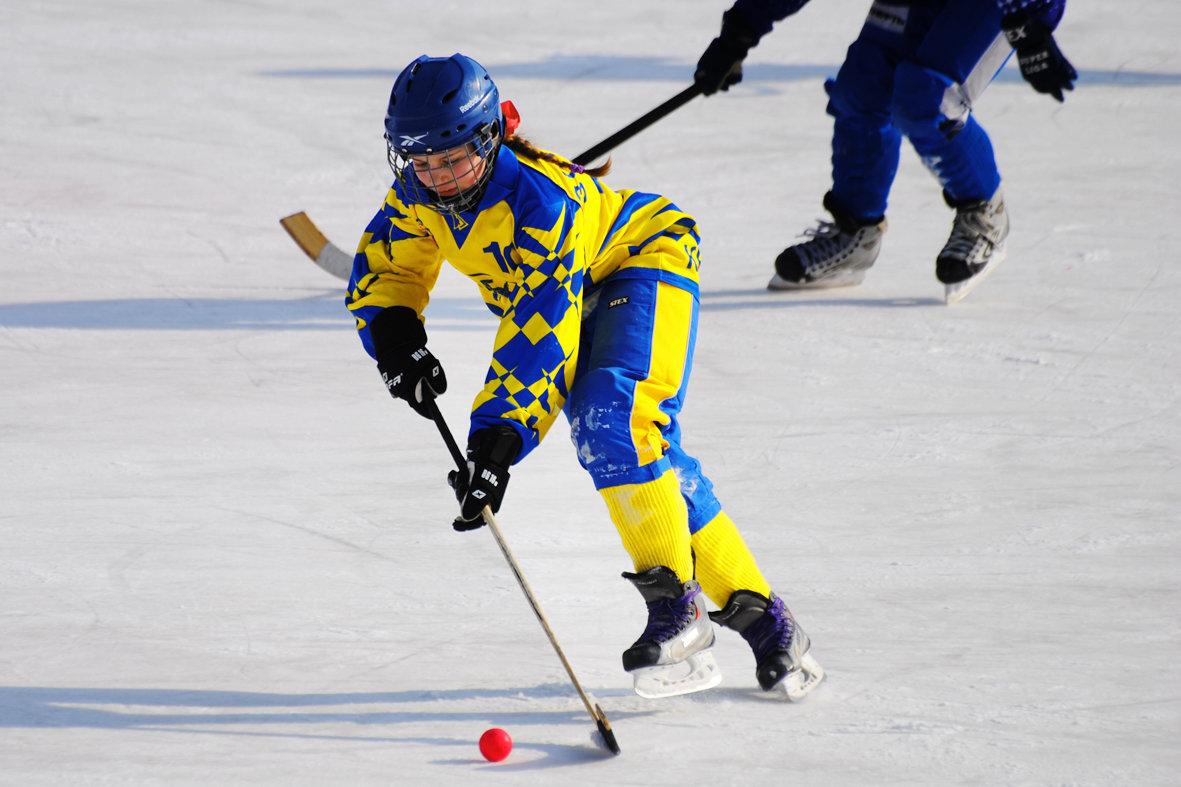 вперед к победе картинки хоккей кристаллов сваровски