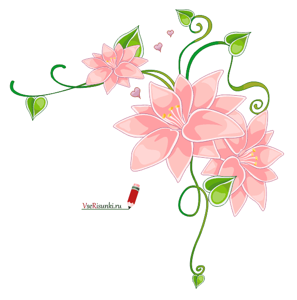 Рисунки цветов карандашом на открытку день