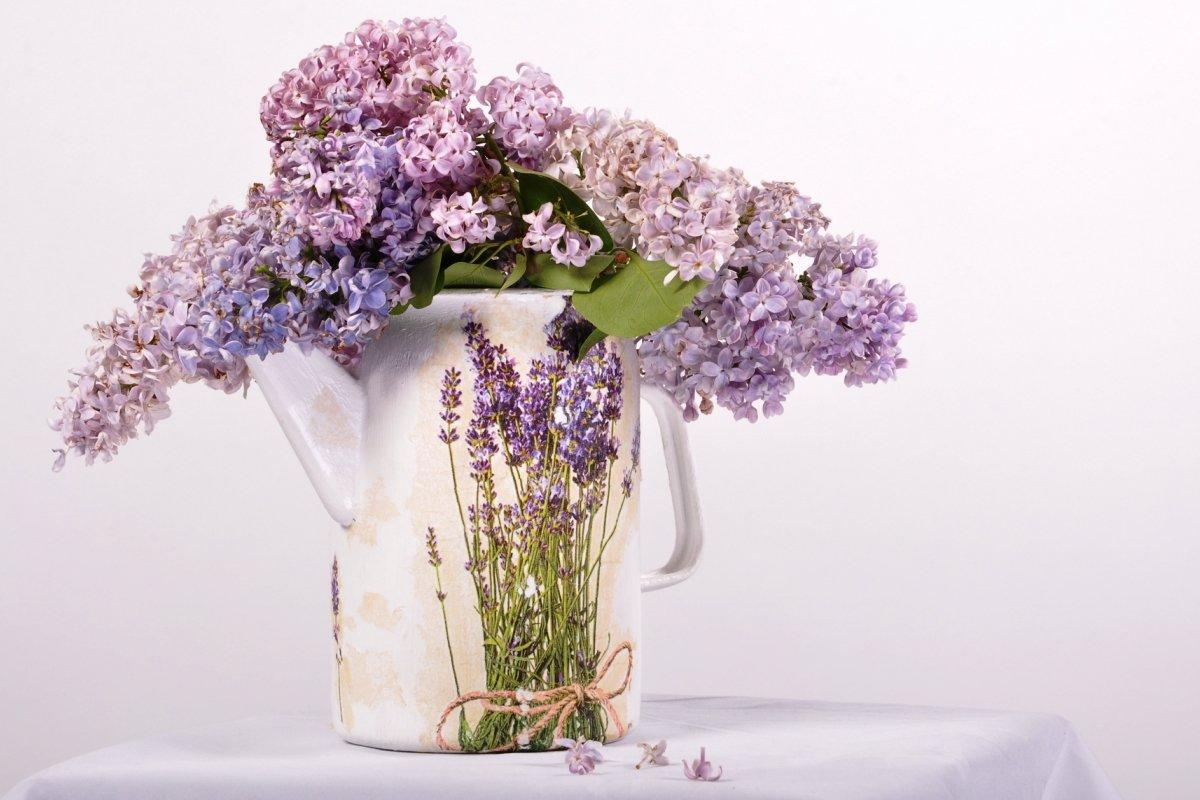 Картинки с цветами в стиле прованс