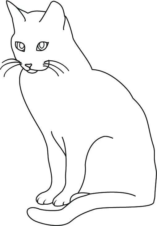 рисунки кошек черно белые ещё