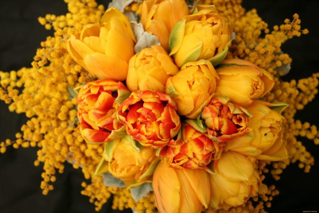 Фото открыток цветов тюльпаны того, она