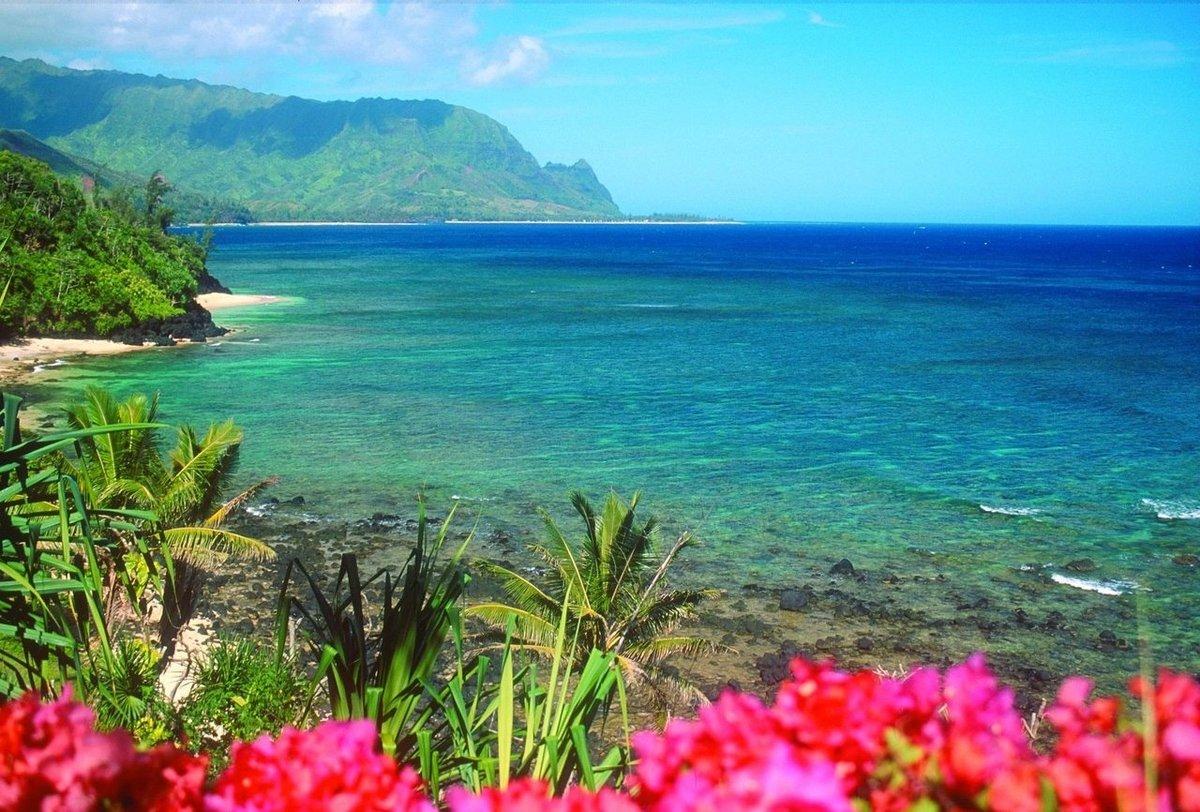 Надписью главное, картинка с морем и цветами