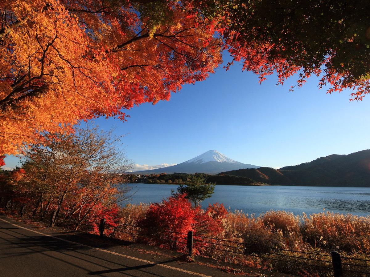 Самые красивые картинки фото осень