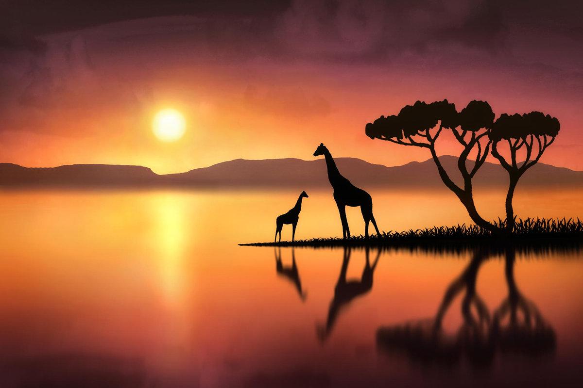 ануса африканские пейзажи в картинках базы