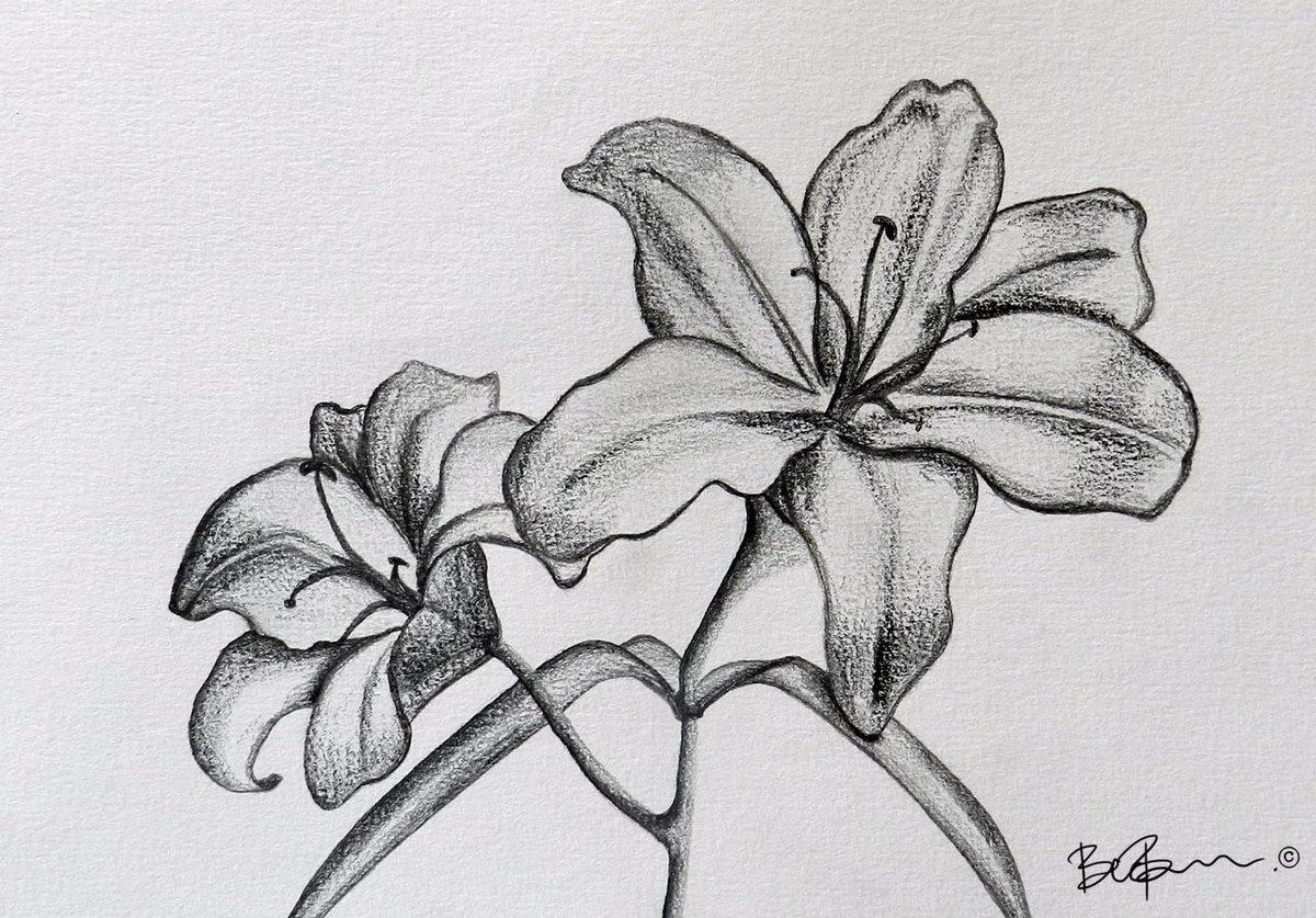 Выздоравливай скорей, рисунок карандашом цветы