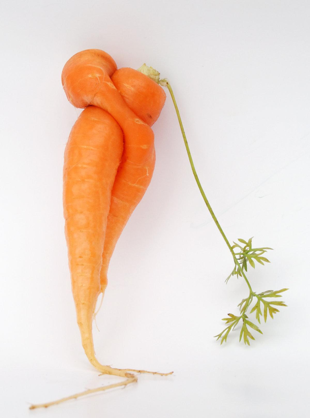 Картинки любовь-морковь, открытки