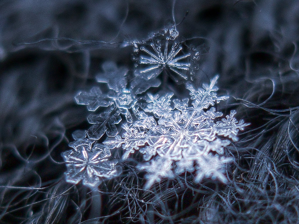 снежинка фото и картинка харитонов талантливый