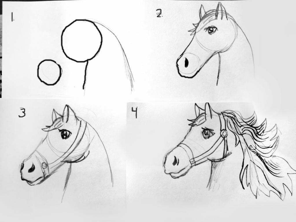 уроки рисования карандашом с нуля в картинках что