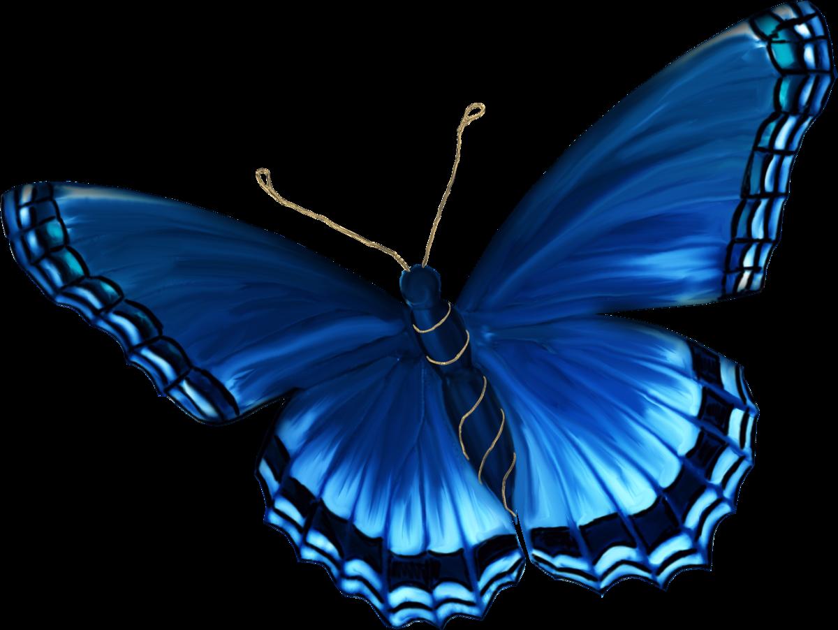 Бабочки картинки на прозрачном фоне