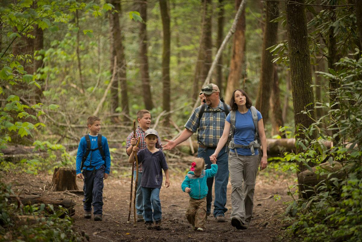 картинки про поход в лес что