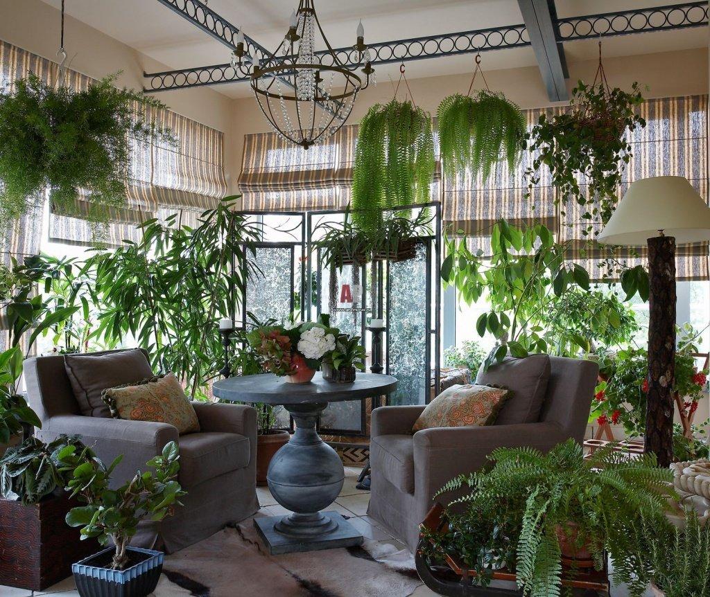 Магазин цветов зимний сад, магазины цветов хабаровске