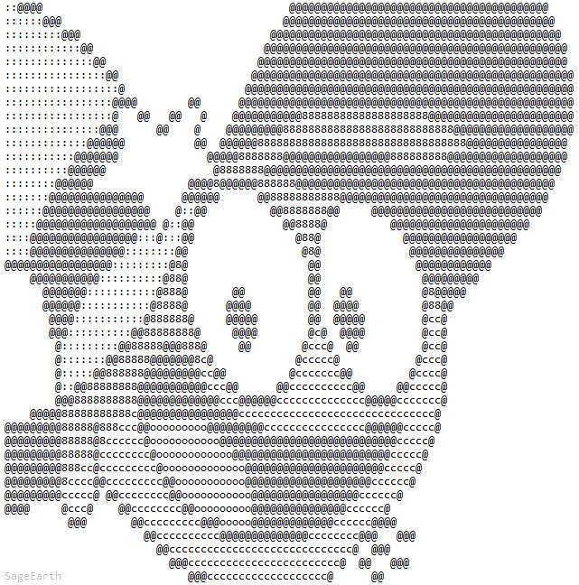 картинки рисунки из символов на клавиатуре котики видно названия