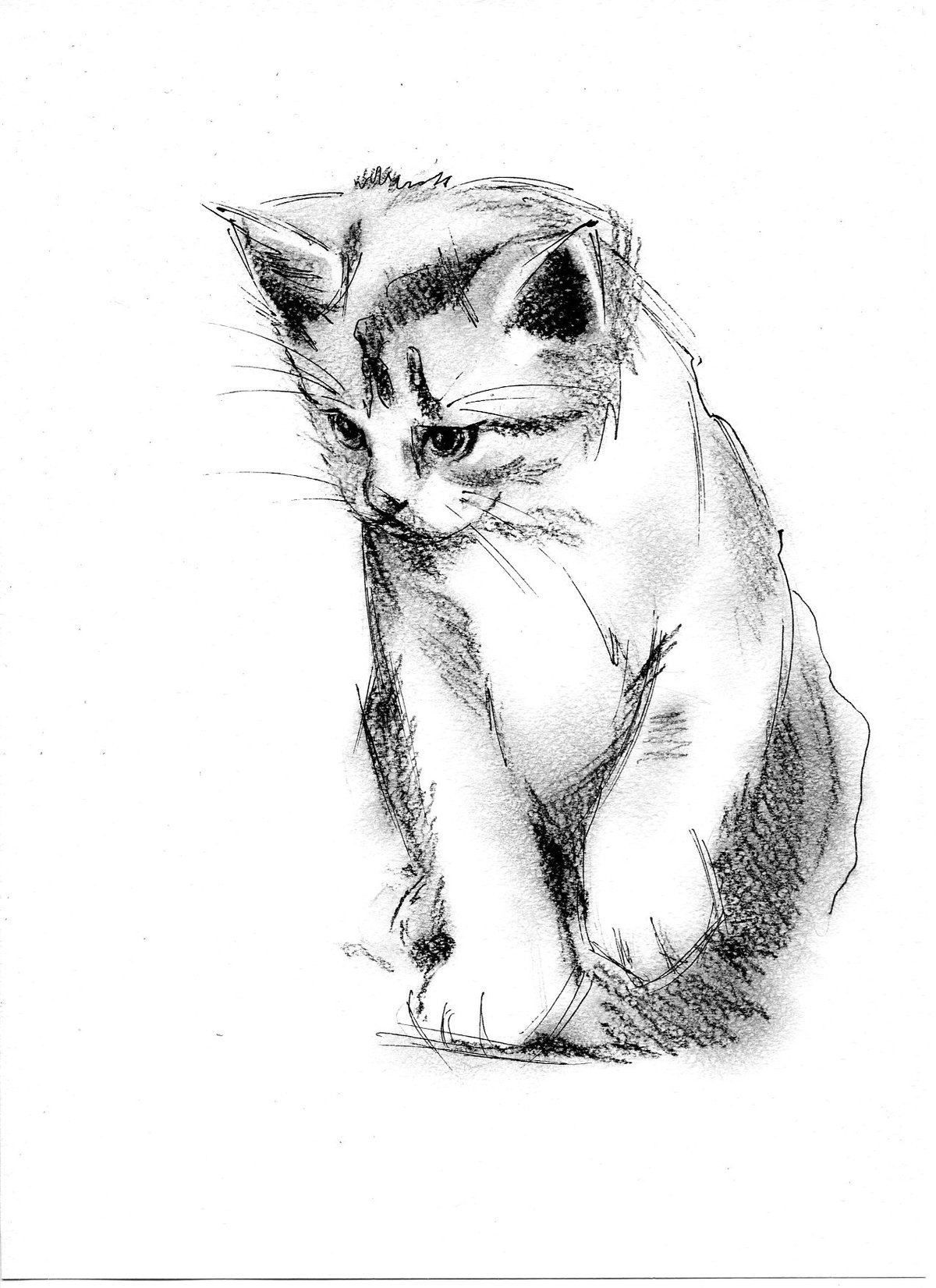 эскизы картинок рисунки сторонник жесткого
