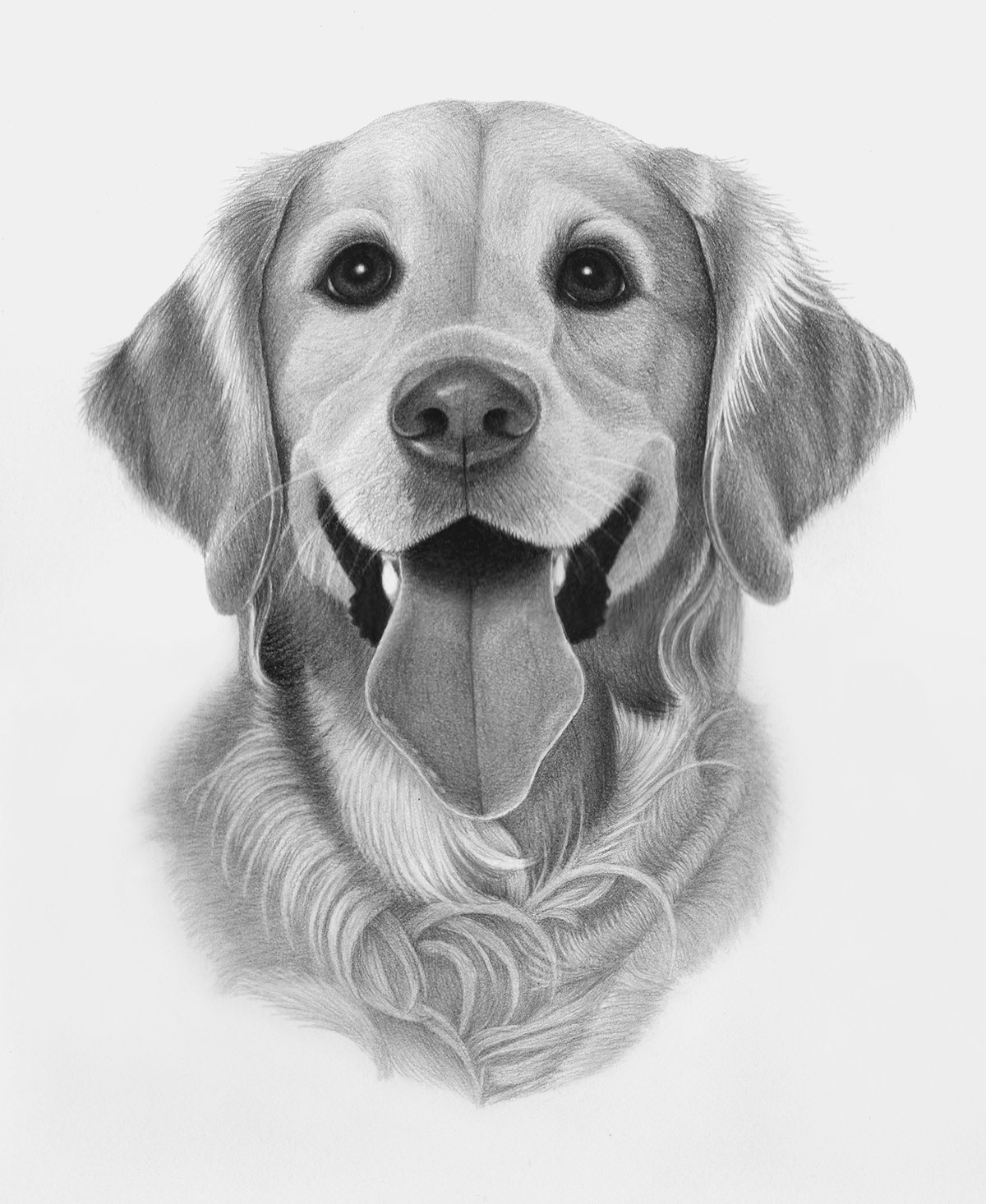 картинки рисовать собак карандашом самой поздней осени