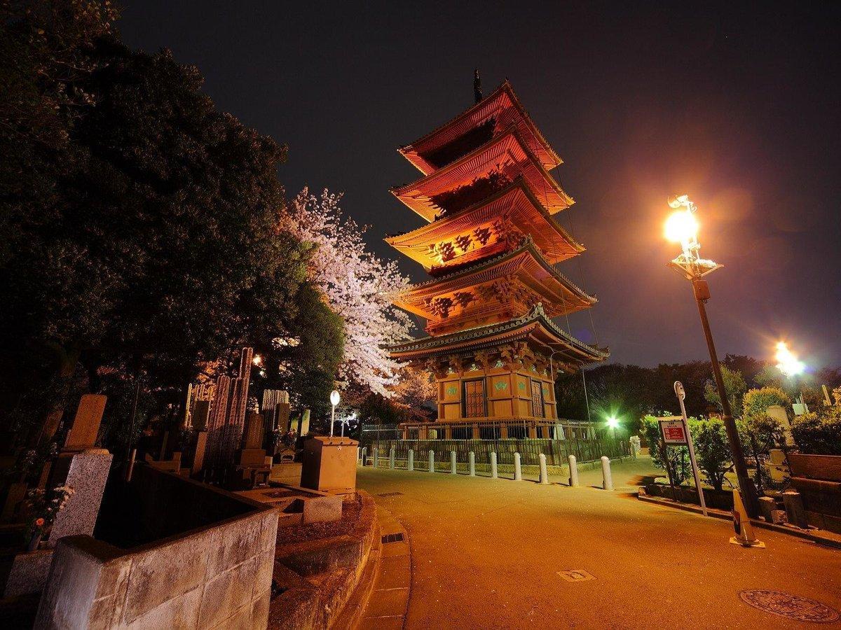 Японские картинки ночь