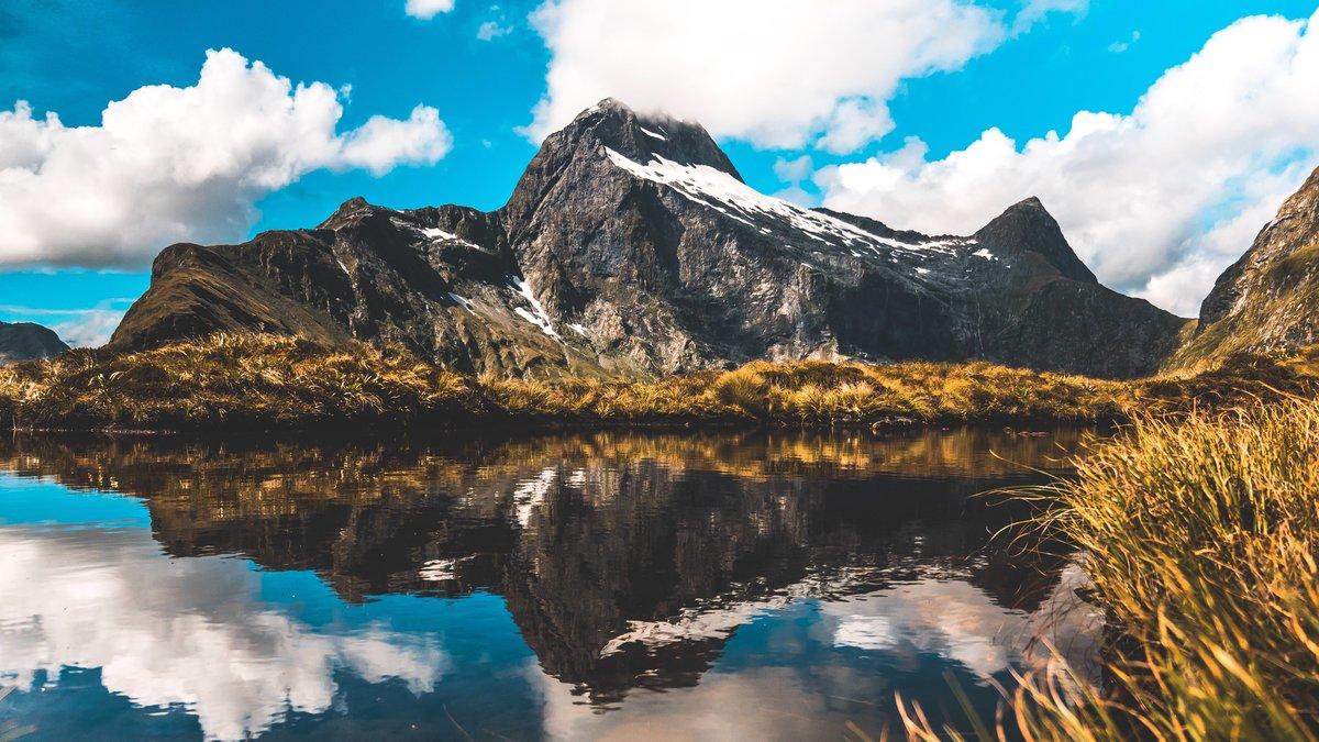 Смотреть видео природа новой зеландии, унизительные картинки про москалев