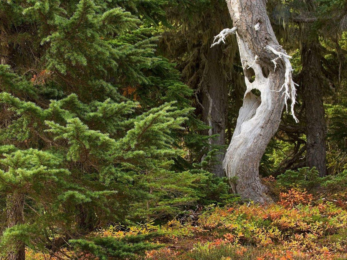 Надписями работа, прикольное название к фотографии о природе