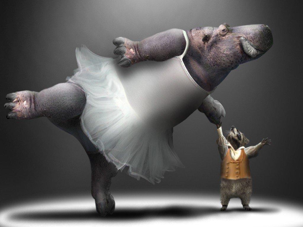 Математические, прикольный танец в картинках