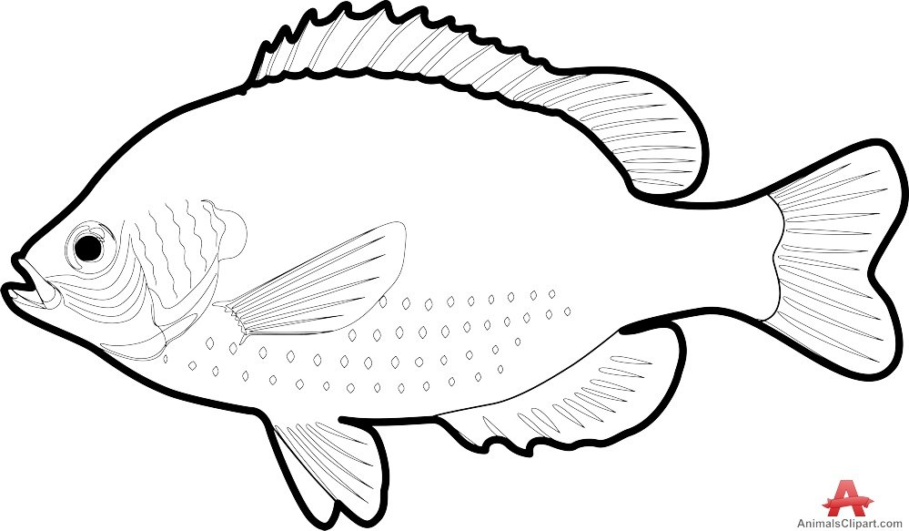 Контур рыбу картинка