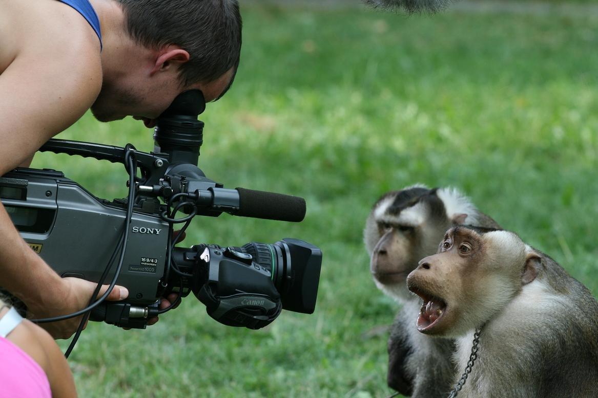 Картинки про журналистов смешные
