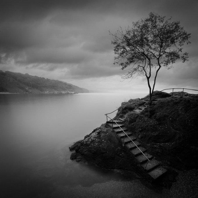 Красивые черно белые фото природа