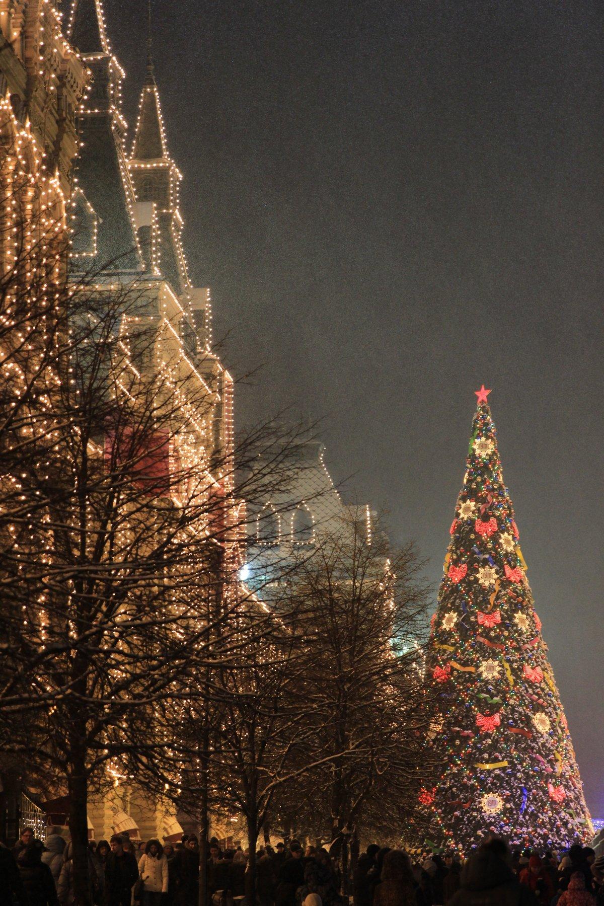 фото елки новогодней по районам москвы трижды