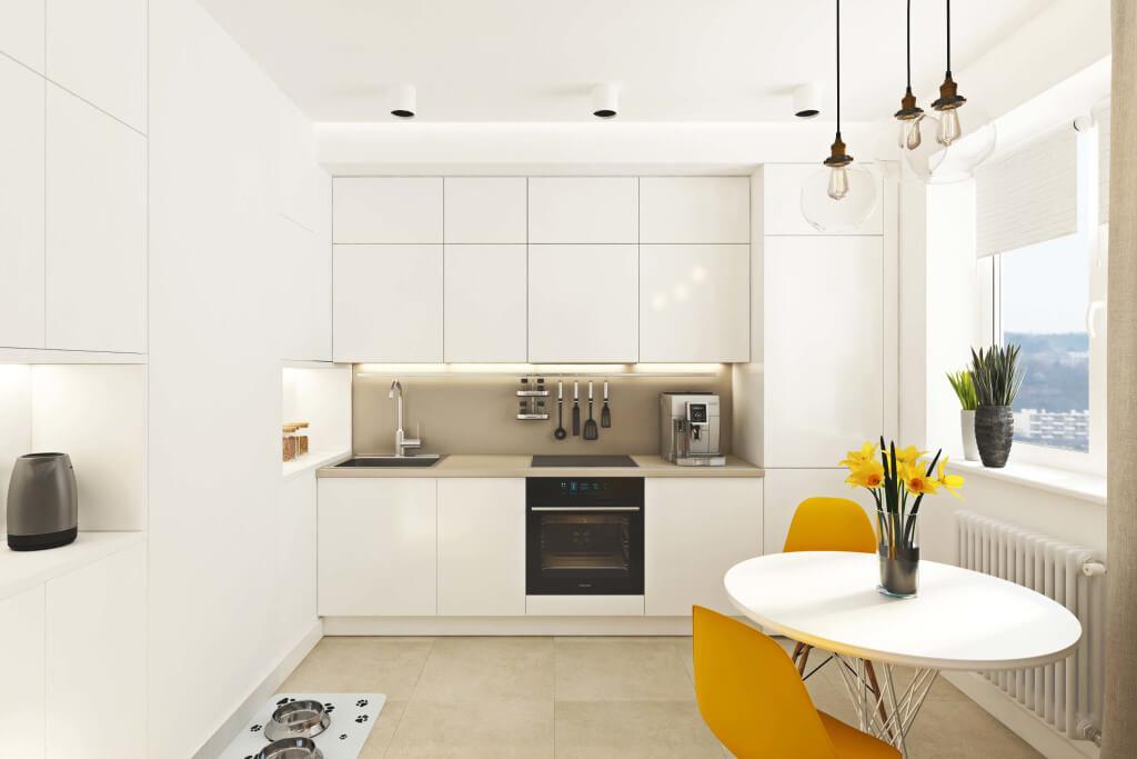 Interior design ideas - Kitchen interior in white color