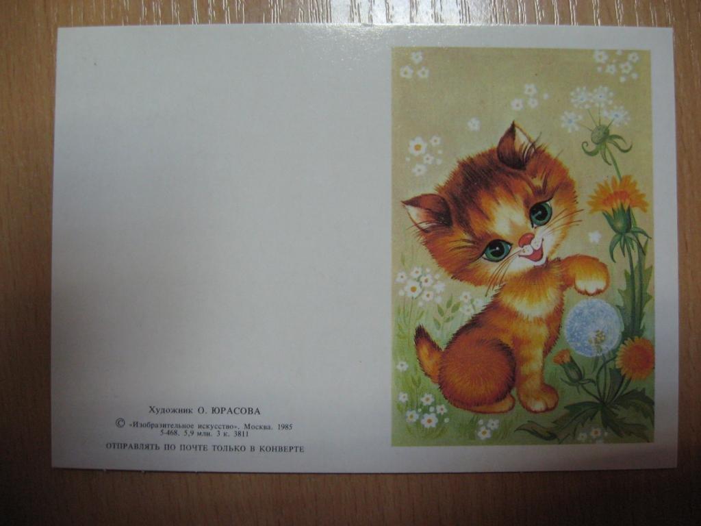 Советские открытки котята создания стильного