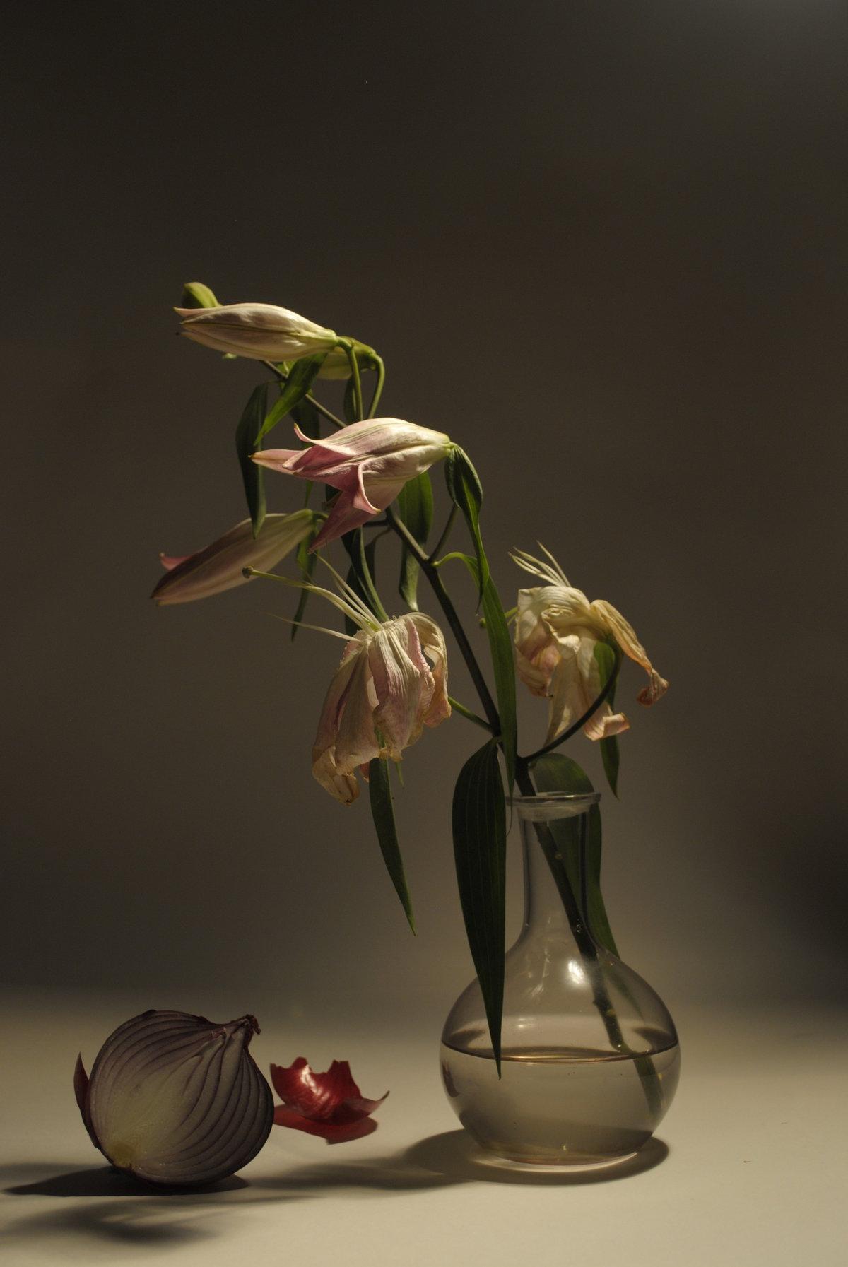 руди тюльпаны увядшие фото кастомизации мотолыг