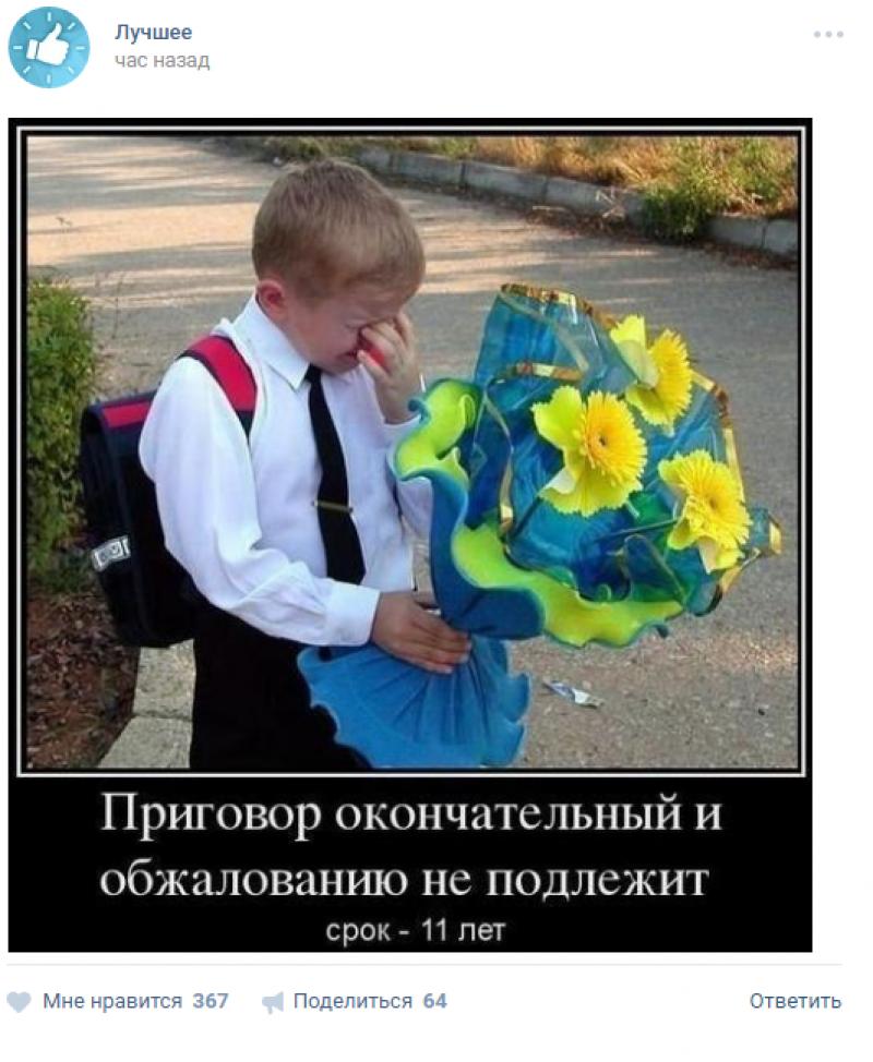 18 школа прикольные картинки, картинки