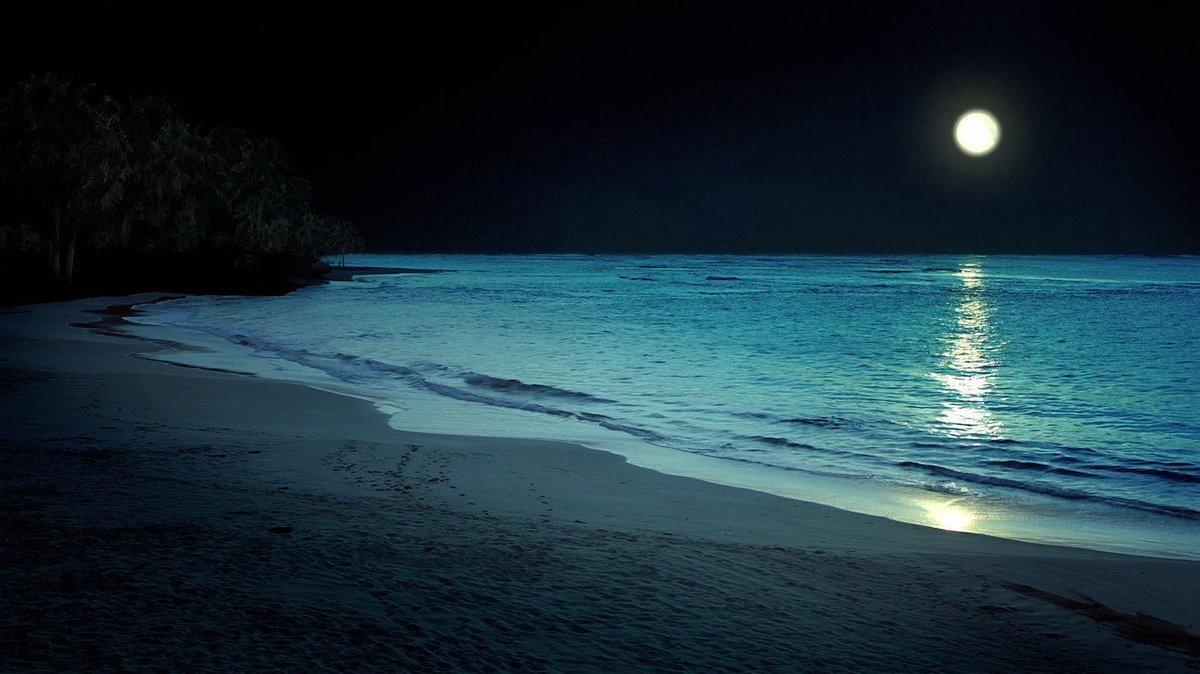 картинки ночь на побережье некоторых врачей наступает