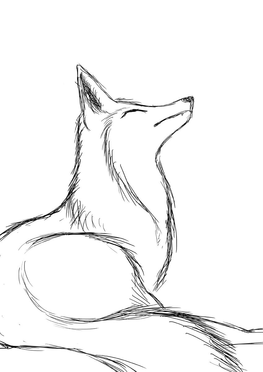 Красивые картинки лисы нарисованные карандашом