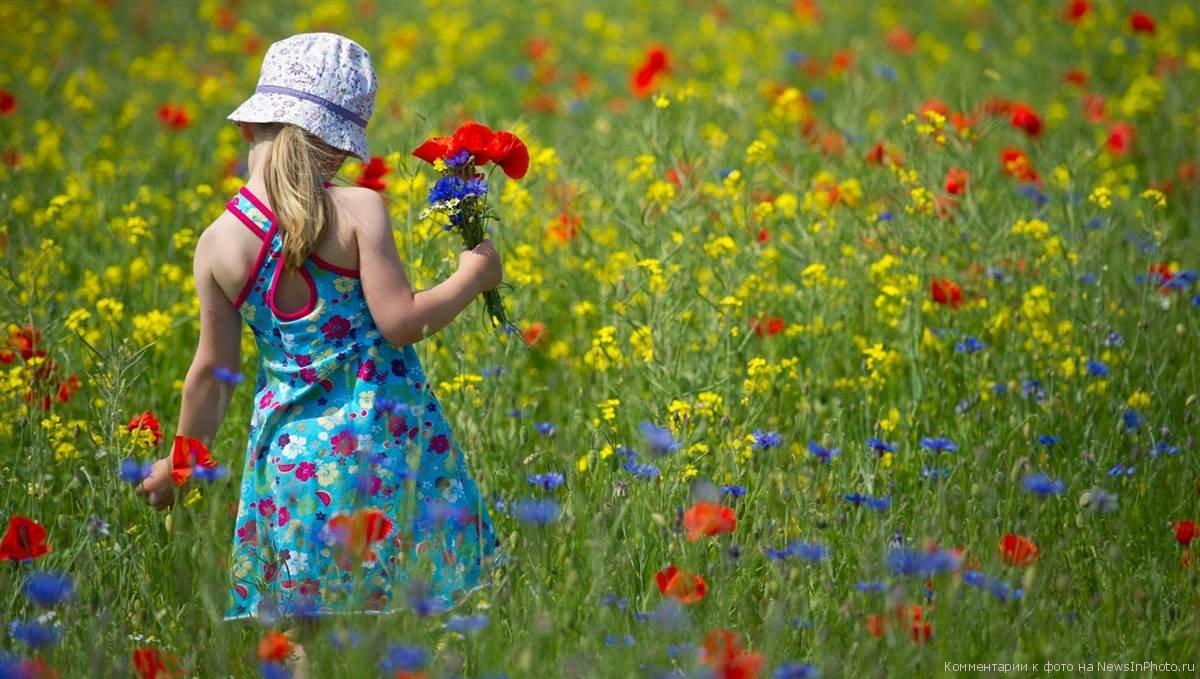 Картинки собирать цветы