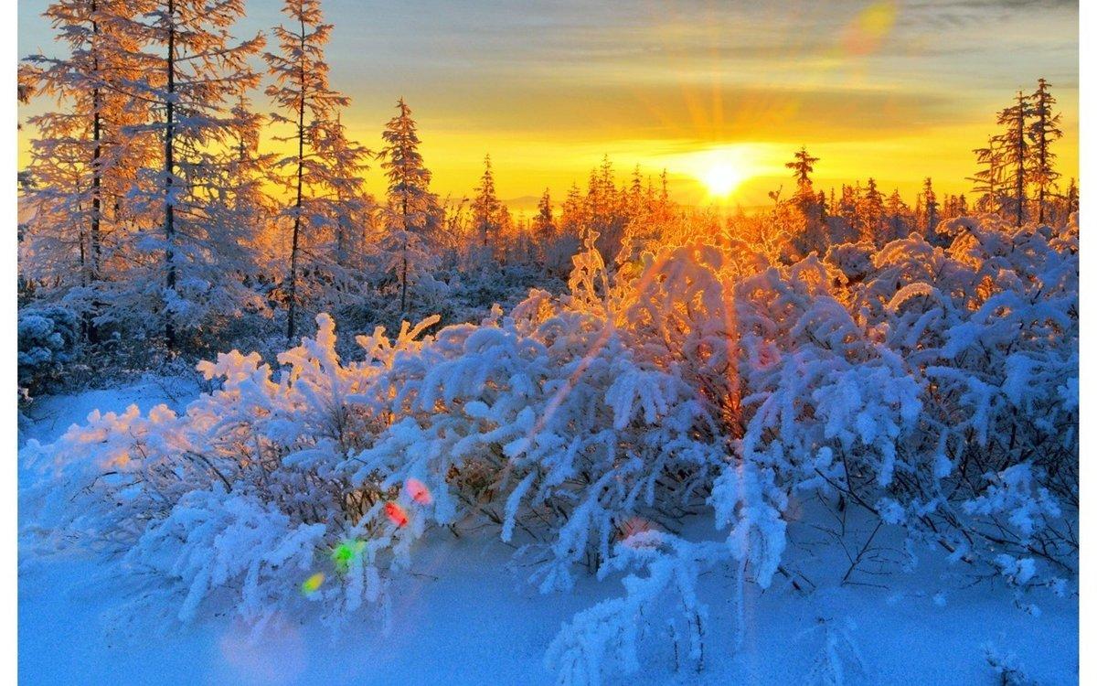 крыши красивое фото про зимнее утро вживление салфетки обожжённую